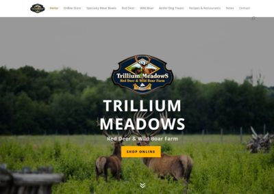 Trillium Meadows